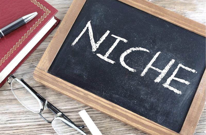 Cara Memilih Niche untuk Blog