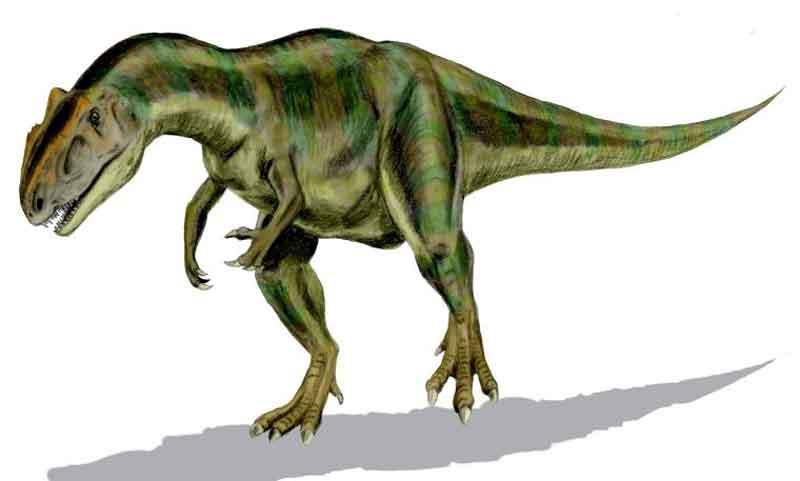 Allosaurus dinosaurus paling berbahaya