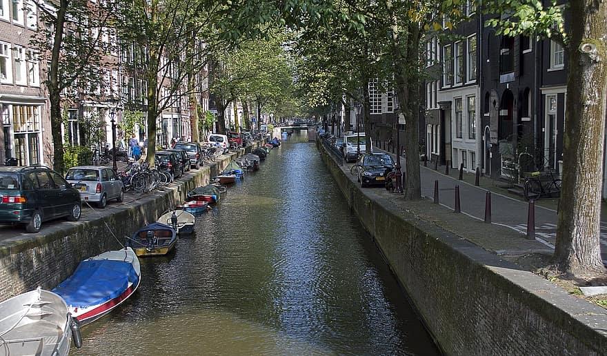 Amsterdam Kota Terhijau di Dunia