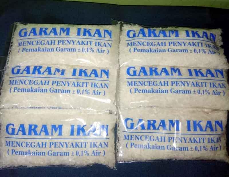 Manfaat Garam Ikan