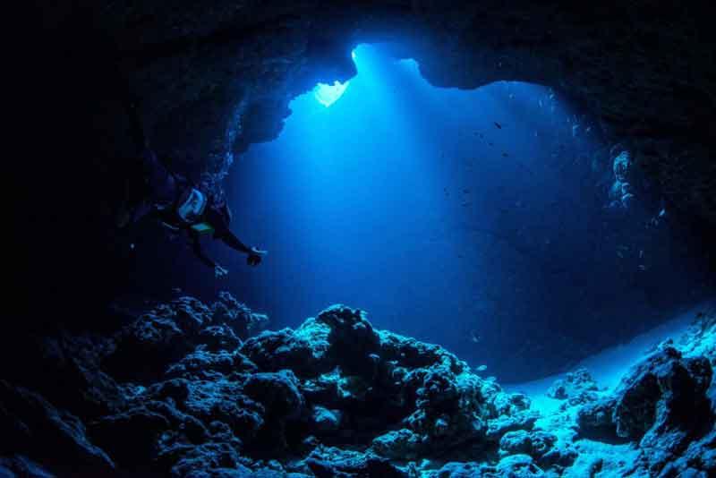 Palung Mariana Penemuan di Dasar Laut