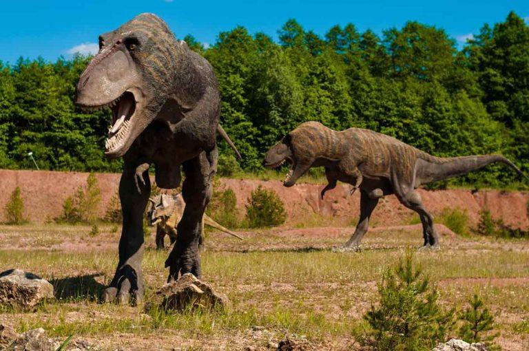 Apa Itu Dinosaurus