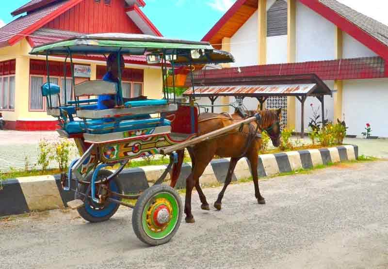 Delman traveling budget minim